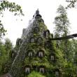 Montaña Magica Lodge