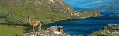 Nuevo Parque Nacional para Chile